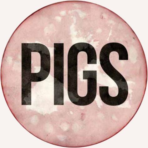 exposición pigs